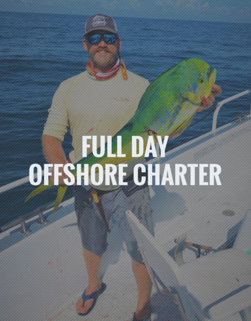 Full Day Offshore Fishing Charter Stuart, FL