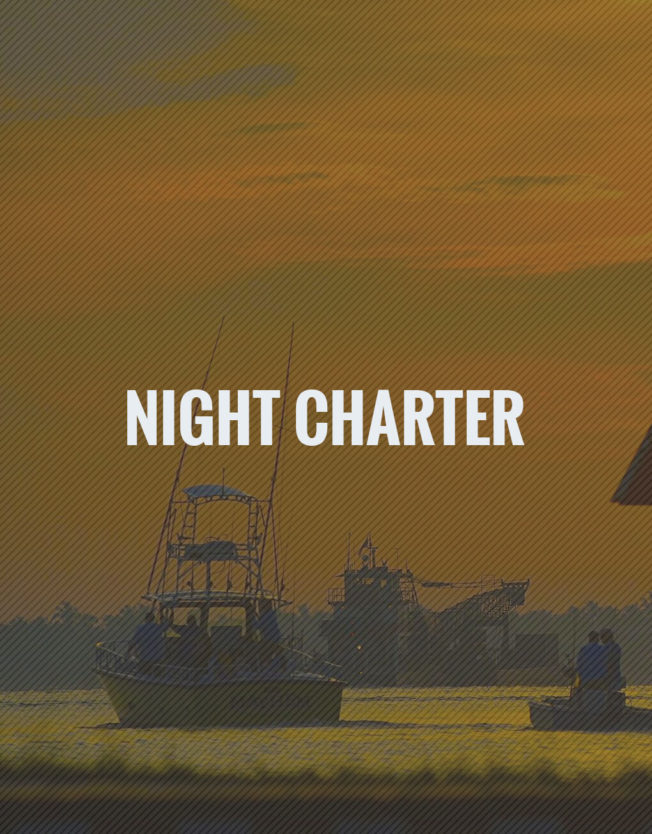 Night Fishing Charters Stuart, FL