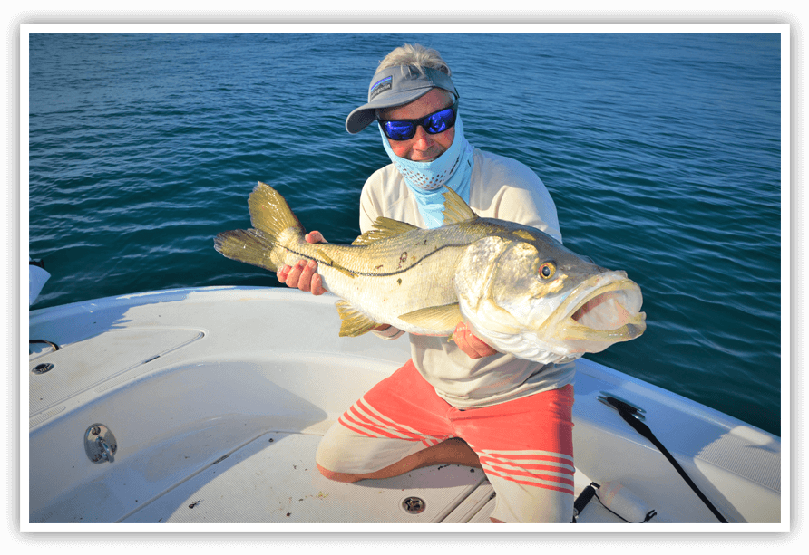 Snook Fishing Charter